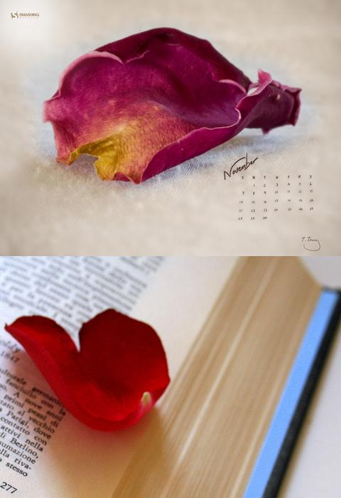 rose-petal-bookmark
